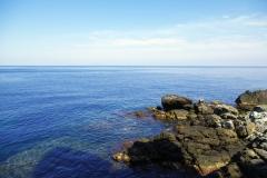 Korsika im Frühling