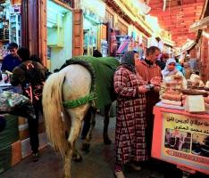 Mit dem Pferd im Souk