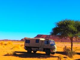 Schattenspender in der Wüste