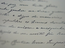 Schriften in der Bibliothek